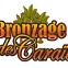 Bronzage Des Caraibes