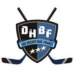 DekHockey Bois-Francs
