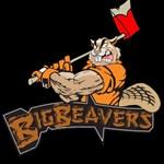 Big Beaver B4